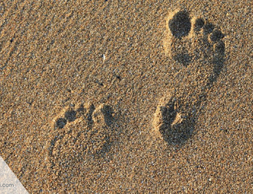 What is a digital footprint? And how to help protect it